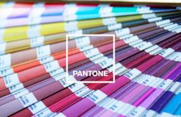 Escala-de-colores-pantone