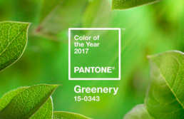 greenery-color-pantone-del-año-2017
