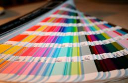 muestras-colores-pantone