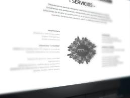 Detalle de los servicios mrdos - Creative Studio Web