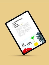 Dr Lembke- Creative Studio, diseño, web y publicidad en Toledo
