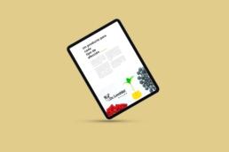 Ipad Página web Dr Lembke - Creative Studio, diseño, web y publicidad en Toledo