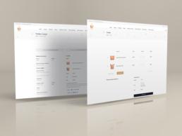 Tienda online RGS Complementos - Creative Studio, diseño, web y publicidad en Toledo